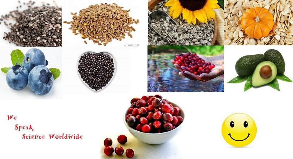 Farat dhe frutat